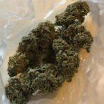 Buy super silver haze weed online
