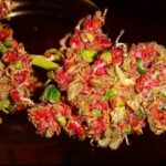 Buy red dragon weed